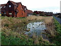 ST3290 : Temporary pond near White Ash Glade, Caerleon by Jaggery