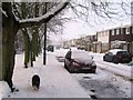 SP9111 : The Trees on the Green and the snow in Buckingham Road, Tring by Chris Reynolds
