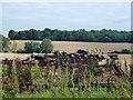 TL0392 : Farming machinery near Southwick Grange by Richard Humphrey