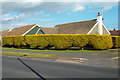 TQ4800 : Clipped hedge of golden yew, corner of Upper Belgrave Road and Ridgeway, Seaford by Robin Stott