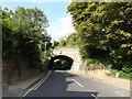 TL1313 : Crabtree Lane & Railway Bridge by Adrian Cable