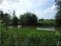 TL2026 : Pond near Redcoats Farm by JThomas