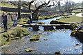 SD8963 : Footbridge over Malham Beck by N Chadwick