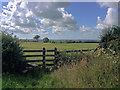 SS6239 : Towards Whitemoor Cottages by Hugh Craddock