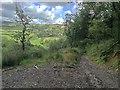SS6338 : Descent to Button Bridge by Hugh Craddock