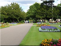 TL8564 : Abbey Gardens, Bury St Edmunds by David Dixon