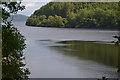 SH9622 : Lake Vyrnwy by Nigel Brown