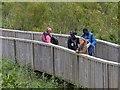 SN7098 : BBC film crew, Cors Dyfi Nature Reserve by Robin Drayton