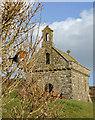 SM7524 : Robin at St. Non's Chapel by Alan Hughes