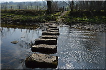 SD7186 : Stepping stones, River Dee by N Chadwick