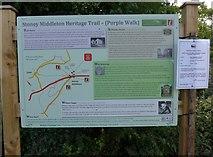"SK2375 : Information board near the ""Roman Baths"" by Basher Eyre"