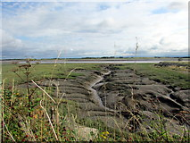 SD3444 : Former inlet/outlet on the River Wyre by Teresa Wilson