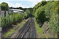 TQ5840 : Hastings Line by N Chadwick