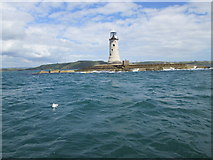 SX4650 : Seagull on the water - Plymouth Breakwater by Peter S