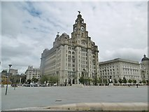 SJ3390 : Liverpool, Royal Liver Building by Mike Faherty