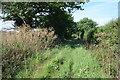 SK7771 : Green Lane - A track by Julian P Guffogg