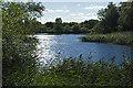 TQ0772 : South Lake, Bedfont Lakes by Alan Hunt