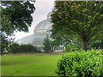 SJ3787 : Sefton Park Palm House by David Dixon