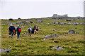 SX5680 : West Devon : Dartmoor Scenery - Lynch Tor by Lewis Clarke