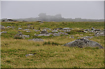 SX5680 : West Devon : Dartmoor Scenery - Lynch Tor by Lewis Clarke