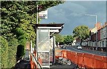 J3674 : EWAY works, Upper Newtownards Road, Belfast - August 2015(2) by Albert Bridge