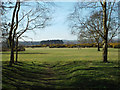 SP1096 : Space for views, picnics and model aircraft flying, Sutton Park by Robin Stott