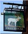 TL1439 : Sign for the White Hart Hotel, Shefford by JThomas
