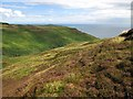 NR6206 : Moorland on the Mull of Kintyre by wrobison