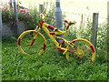 NZ0161 : The stripey bikes of Riding Mill (2) by Oliver Dixon