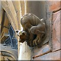 SJ8990 : A grotesque at St Mary's (2) by Gerald England