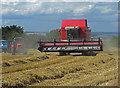 SE9918 : Harvesting near Horkstow by David Wright