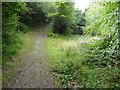 SX4471 : Junction of footpaths at head of the Impham valley by David Smith