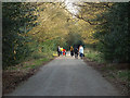 SP1196 : Going to and from the Hartopp gate, Sutton Park by Robin Stott