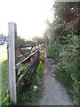 SW8235 : Footpath from Mylor Churchtown by Richard Rogerson