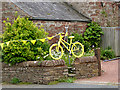NY5633 : The yellow bikes of Langwathby (8) by Oliver Dixon
