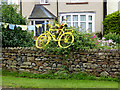 NY5633 : The yellow bikes of Langwathby (12) by Oliver Dixon
