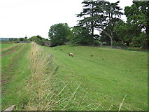 SO6143 : Former Hereford & Gloucester Canal by Monksbury Court by Oast House Archive