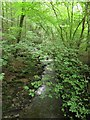 SD9952 : Sougha Gill in Skipton Woods by Graham Robson