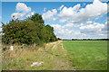 SE8219 : Bridleway adjacent to access land by Trevor Littlewood