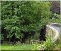 SX3680 : Greystone Bridge by David Smith