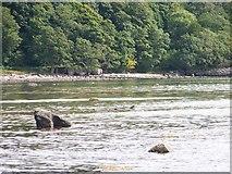 NR9666 : Kilbride Bay by Elliott Simpson