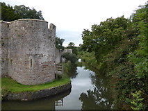 ST5545 : The Palace Moat, Wells by PAUL FARMER