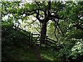 SN6879 : Footpath gate by John Lucas