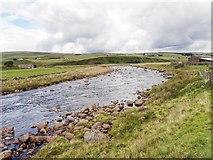 NY8529 : River Tees by Mick Garratt