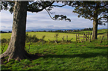 SD4764 : Grazing land south of Slyne by Ian Taylor