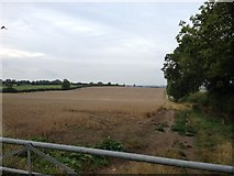 SP7389 : Great Bowden footpath heading north by Dave Thompson