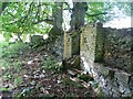 SJ9782 : The Ruins of Mather Clough Farm by Anthony Parkes
