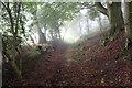 SD6840 : Footpath on the Eastern Flanks of Longridge Fell by Chris Heaton