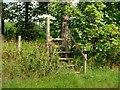 SJ4472 : Footpath and Ladder Stile, Wimbolds Trafford by David Dixon