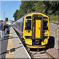 NT4936 : A train at Galashiels Station by Walter Baxter